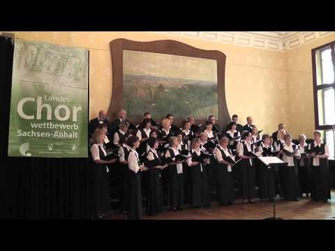 Landes-Chorwettbewerb Sachsen-Anhalt 2013 - Lehrerchor Halle