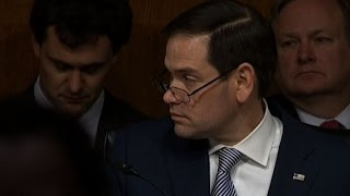 Witness: Russia targeted Rubio, Ryan