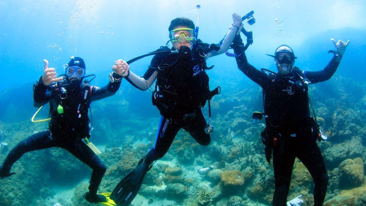Resultado de imagem para mergulho arraial