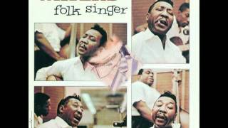 MUDDY WATERS-Still A Fool
