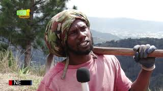 Rasta Camp Speaks about  COVID-19 | Part 1