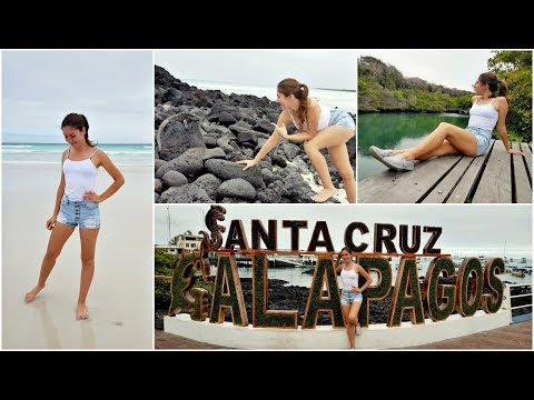 Tortuga Bay, El Chato Reserve, Las Grietas | Santa Cruz Island, Galapagos | Vlog #1