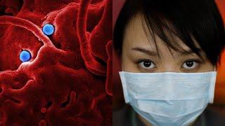 Нашли внешнего ВРАГА: Китай обвиняют в эпидемии КОРОНАВИРУСА и замалчивание информации