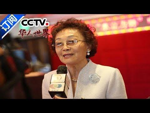 《华人世界》 20171116 | CCTV-4