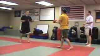 Combat Sport - Mixed Martial Arts