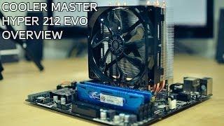 Best CPU Cooler! | Cooler Master Hyper 212 EVO Overview & Install