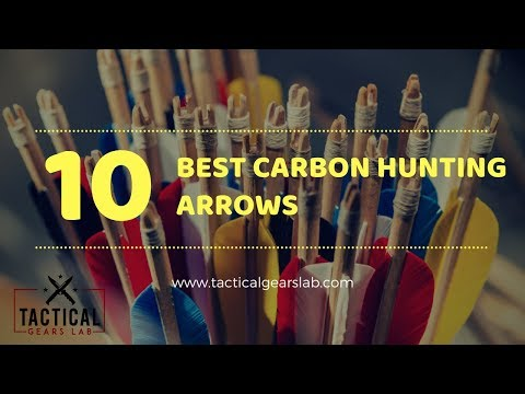 10 Best Carbon Hunting Arrows  - Tactical Gears Lab 2020