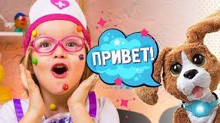 Говорящий щенок Hasbro Furreal Freinds съел все конфеты Богданы!