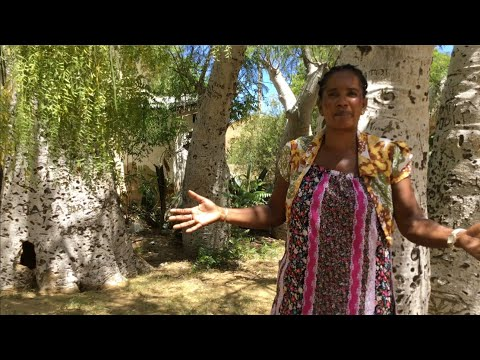 Women and Land Corruption Madagascar | short version