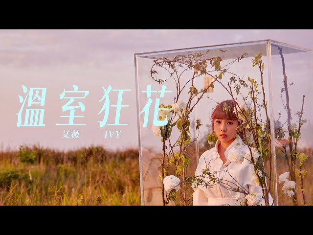 艾薇Ivy 〈溫室狂花〉Official Music Video