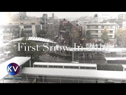 Tokyo's first snow since 1962 | Japan 2016