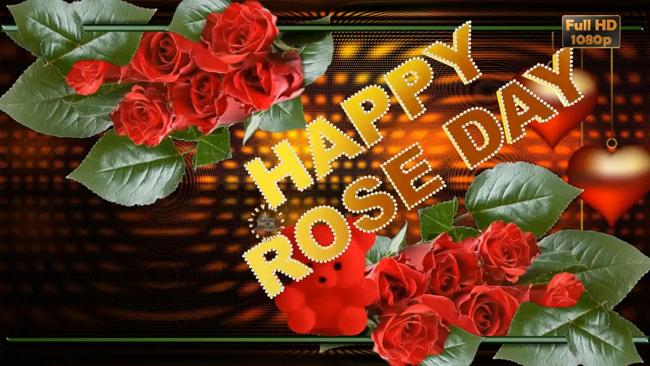 Happy Rose Day 2018,Wishes,Whatsapp Video,Greetings,Animation,Messages,Download,Rose  Day Quotes