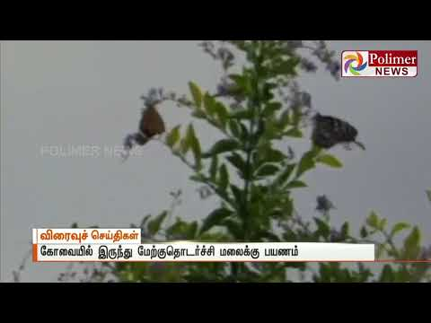 Covai Favorable weather: butterflies season starts