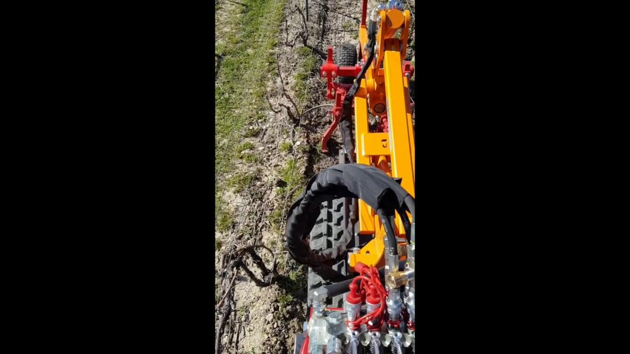 Le travail du sol dans les vignes