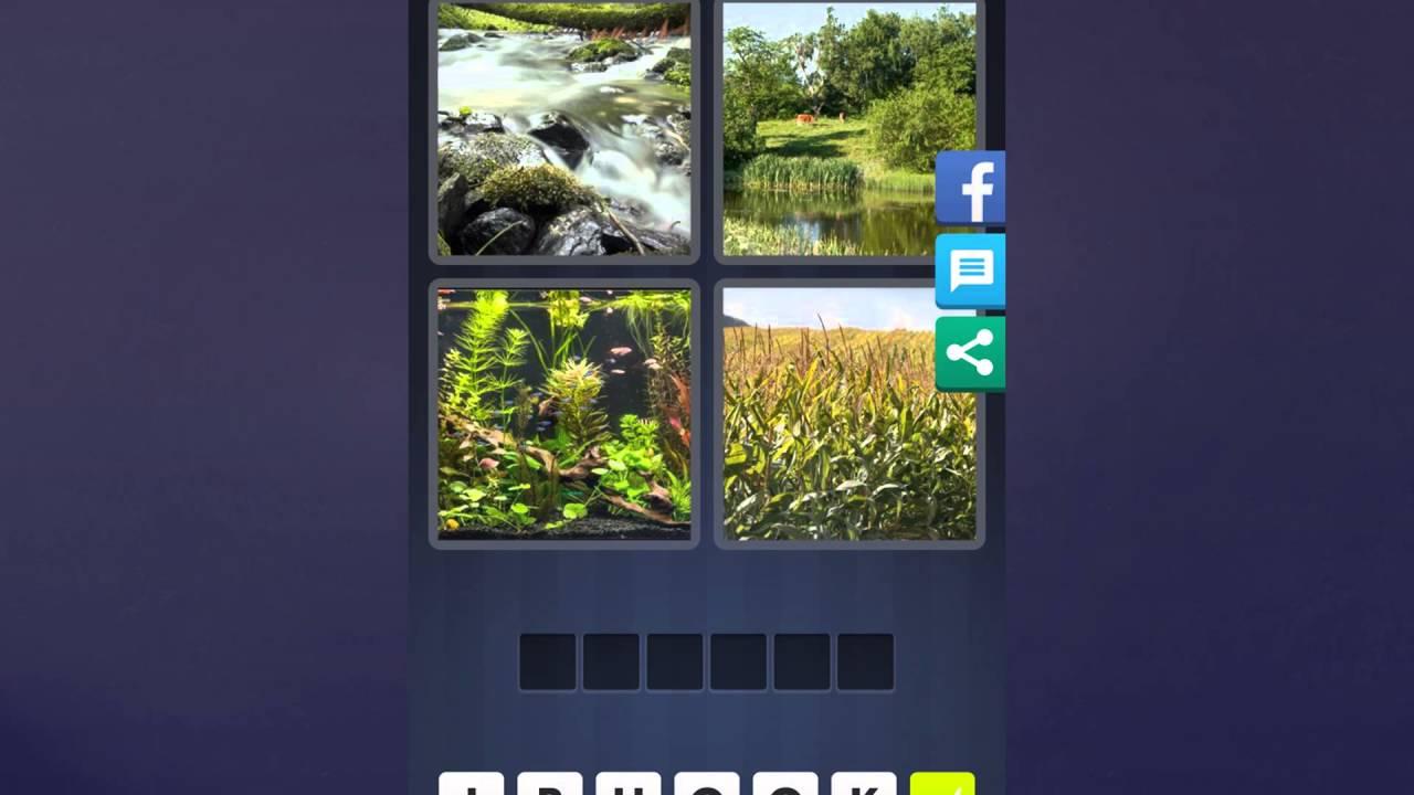 4 Bilder 1 Wort Lösung Fluss Teich Wasserpflanzen Pflanzen