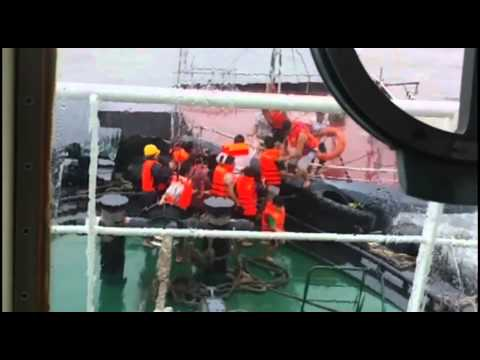 48 Vietnamese rescued off south China coast