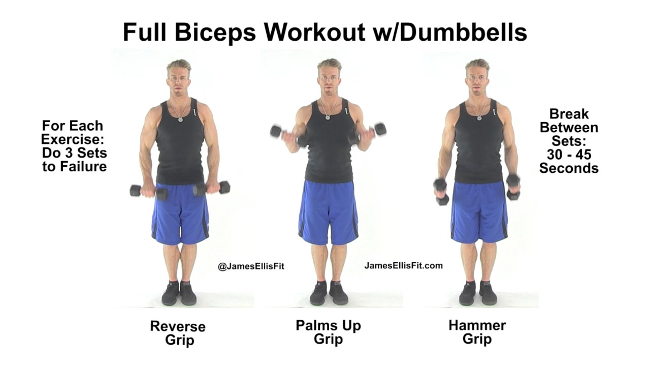 complete biceps workout using dumbbells youtube