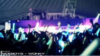 The Big Reunion 2013 - Skegness Part 2  (Wideboys, Majestic, Micky Slim, Example)