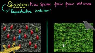 Speciation (with example) | Heredity & Evolution | Biology | Khan Academy