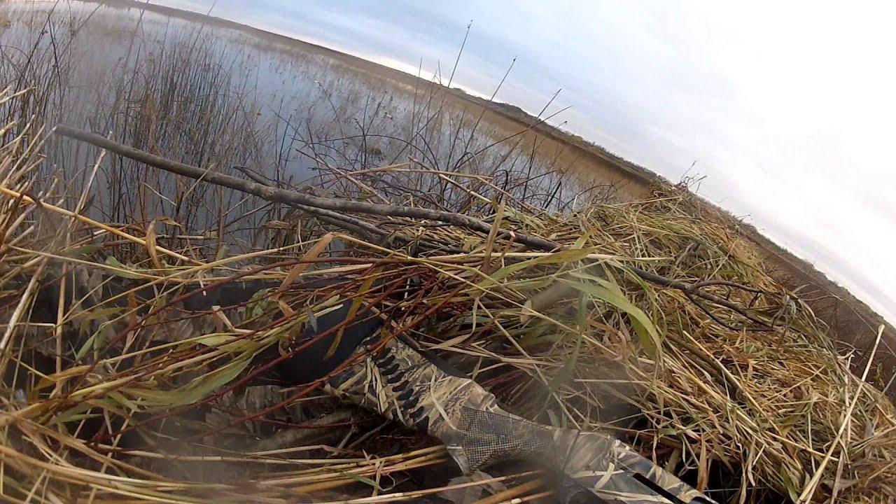 Download Saskatchewan Wild Rice Duck Hunt  2012 Day 1