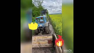 Синий трактор едит к нам