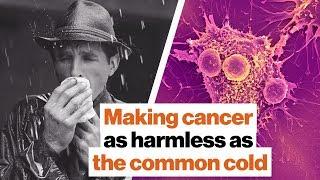Making cancer as harmless as the common cold | Michio Kaku
