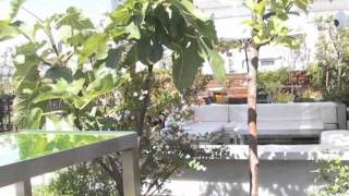 Hotel de las Letras-Disfruta de las mejores vistas desde un ático de lujo-elEconomista.es