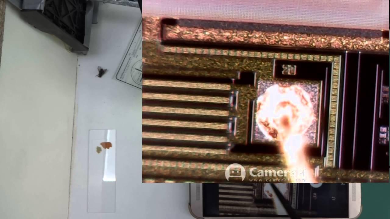 Usb microscope 1600x more random small objects youtube
