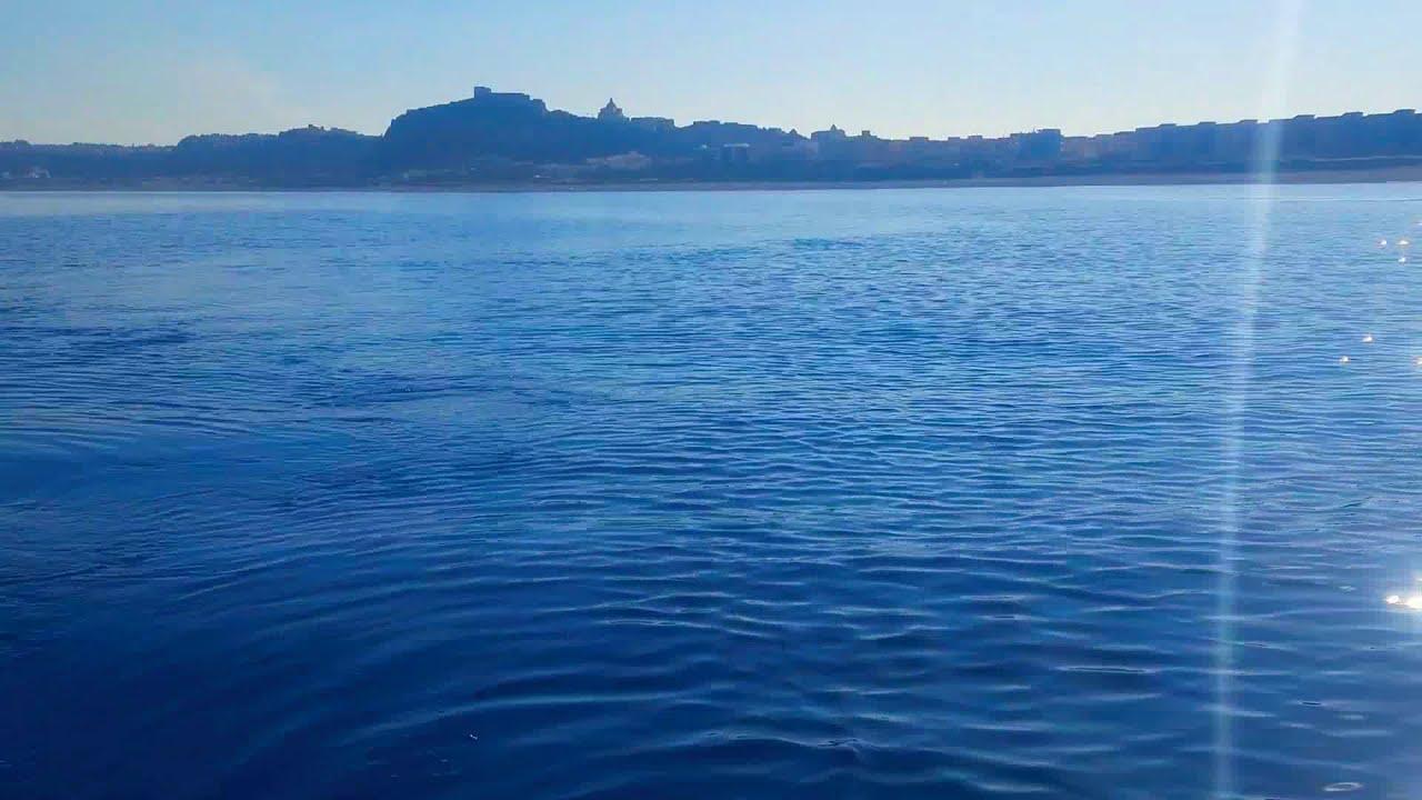 Pesca in Barca (in arrivo nuovi episodi 🎣) Attivate la 🔔