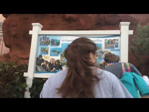 Paradise Island Bahamas 2016 | Video Collage