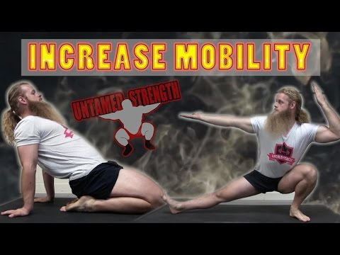 Daily Mobility Routine - Increase Flexibility / Mobility