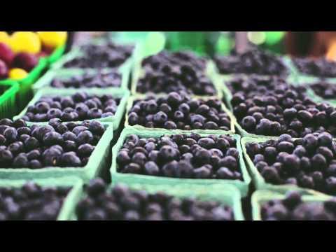 Shop CSA Toronto | Local CSA Farm Share and Delivery | Forsyth Family Farms