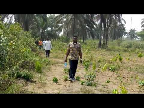 Plots of Land for sale jn Immaculate Gardens, Omagwa Port Harcourt