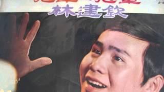 難忘的妳  ( 李金 & 林建钦 )