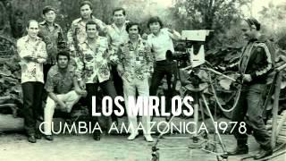 Los Mirlos - Cumbia Amazonica (Vinyl 1978)
