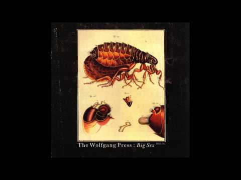 The Wolfgang Press - God's Number