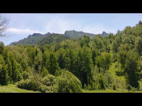 Гора Салоп.