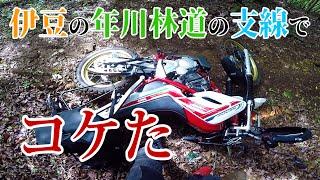 【モトブログ】年川林道の支線はハードでスリピッピでした💪【SEROW250】