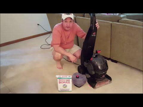 Diy carpet cleaning solution borax