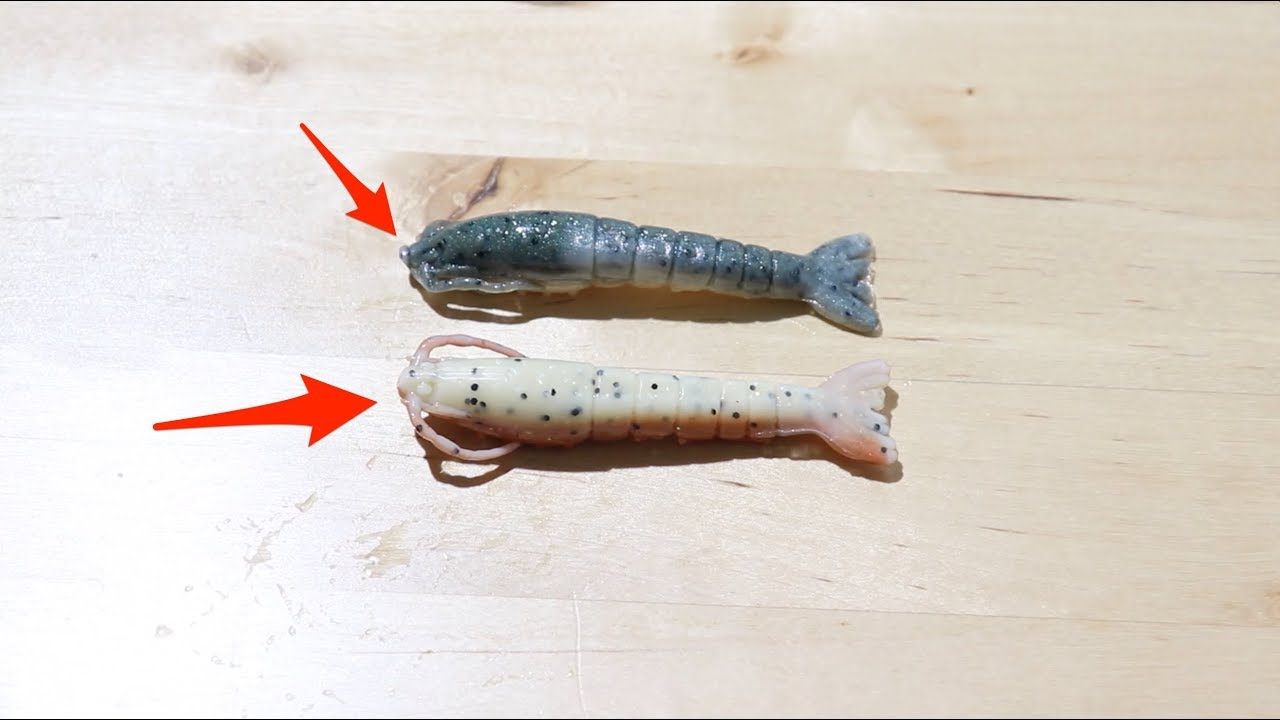 3 Best Ways To Rig Gulp Shrimp (And When To Use Each Method)