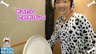 ★「ママに骨かくされた~!」犬ごっこでホネを探せ!★Bone hidden in the mother★ thumbnail