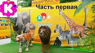 Zoo Barcelona animales Зоопарк Барселоны Смотрим животных в испанском зоопарке часть 1