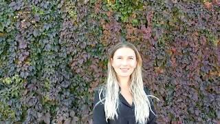 Виноград девичий стена осень