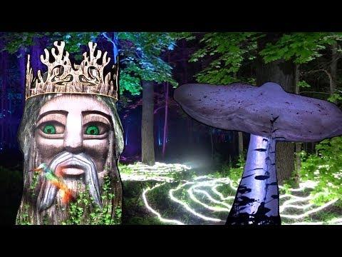 ПОТРЯСАЮЩЕЕ ЗРЕЛИЩЕ! Фестиваль Вдохновение. Волшебный лес, парк Останкино