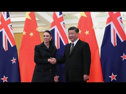 While China is 'hooking into Australia' for standing up for itself, NZ is 'being prai