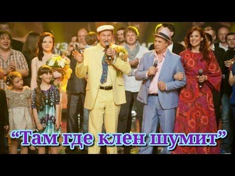 "Сваты 5 лет - ""Там где клен шумит"""