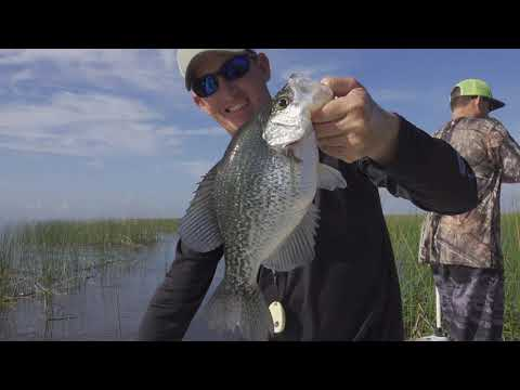 "Black Crappie {Catch Clean Cook} As Seen On TV ""Copper Grill Mat"""