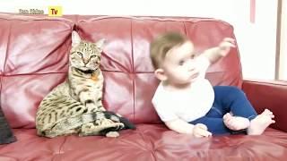 Cats And Babies Are So Fuuny  1    Смешные Кошки и Дети   1   Komik Kediler Ve Bebekler   1