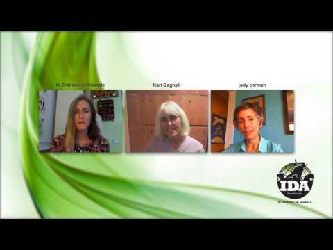 Vegan Spirituality Online Gathering with Kari Bagnall