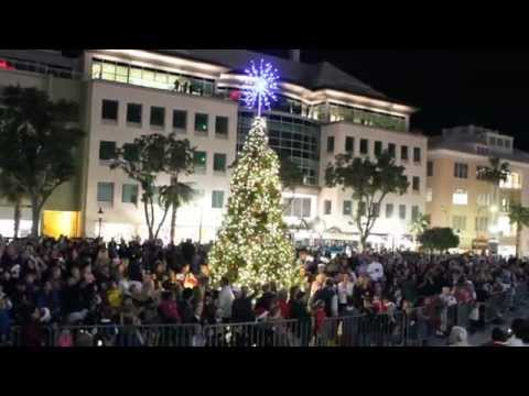 Tree of Lights - Lighting Ceremony Bermuda November 25 2011